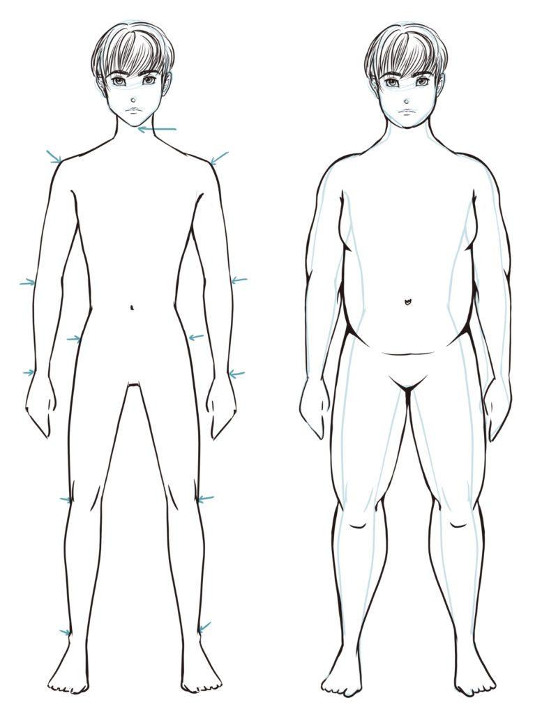 Dessiner des physiques différents : le surpoids (homme)